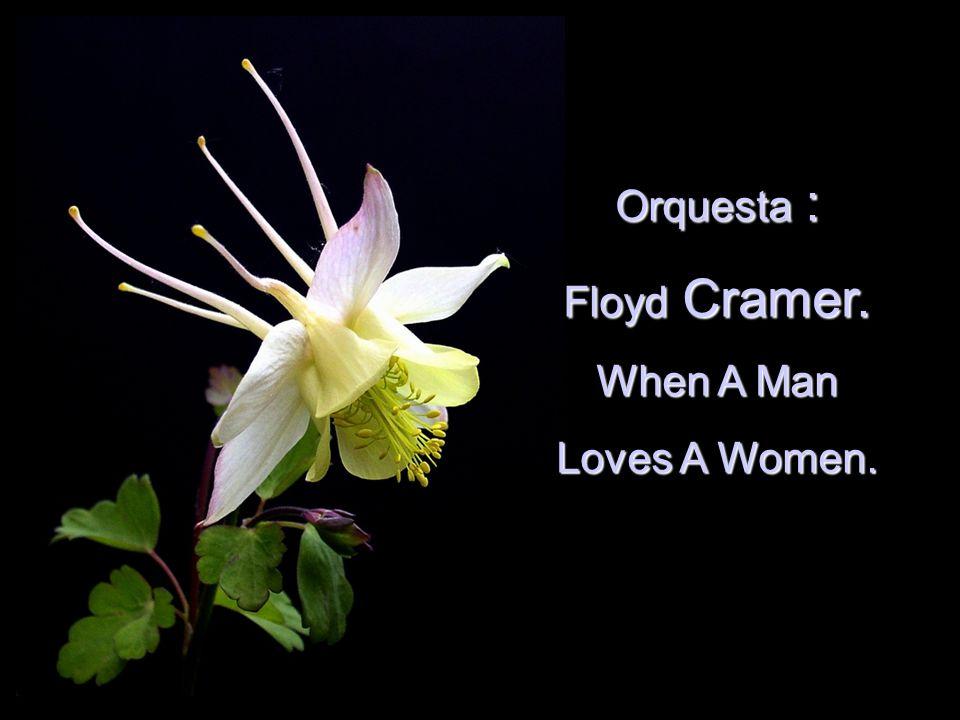 Orquesta Orquesta : Floyd Floyd Cramer. When A Man Loves A Women.