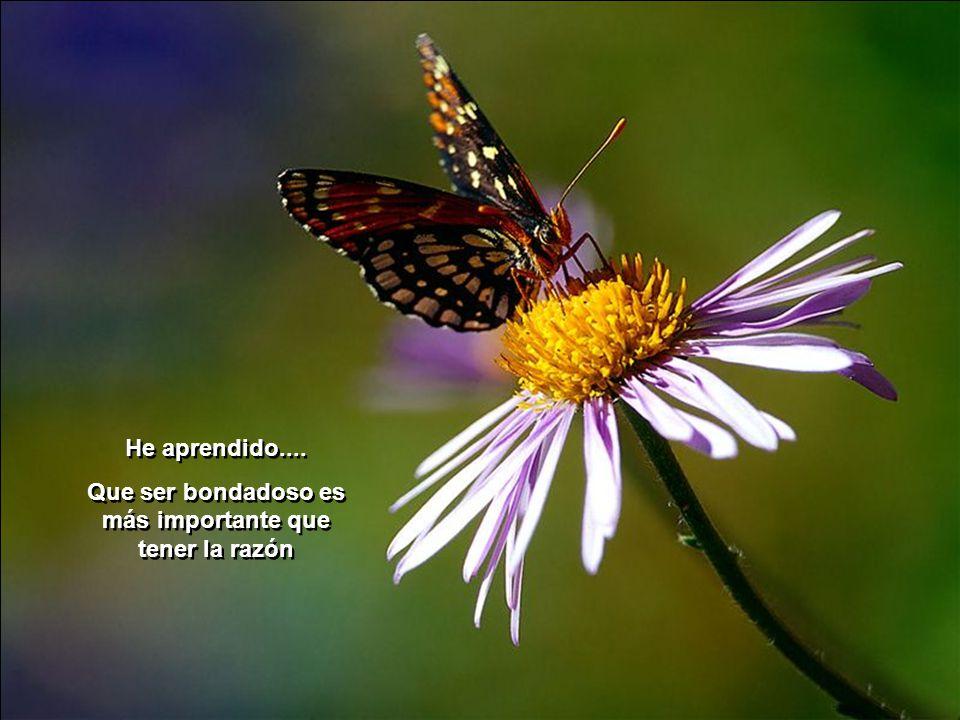He aprendido....Que ser bondadoso es más importante que tener la razón He aprendido....