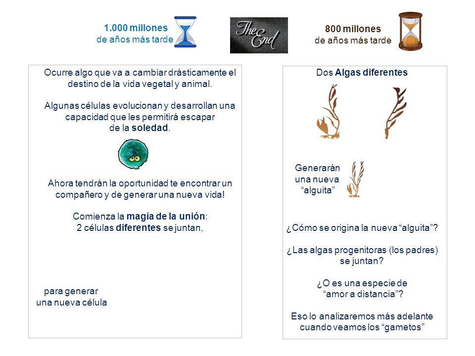 Cianobacterias crean las condiciones necesarias para la magia de la vida.