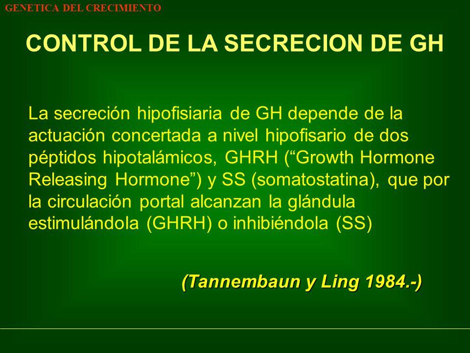 GENETICA DEL CRECIMIENTO CONTROL DE LA SECRECION DE GH La secreción hipofisiaria de GH depende de la actuación concertada a nivel hipofisario de dos p