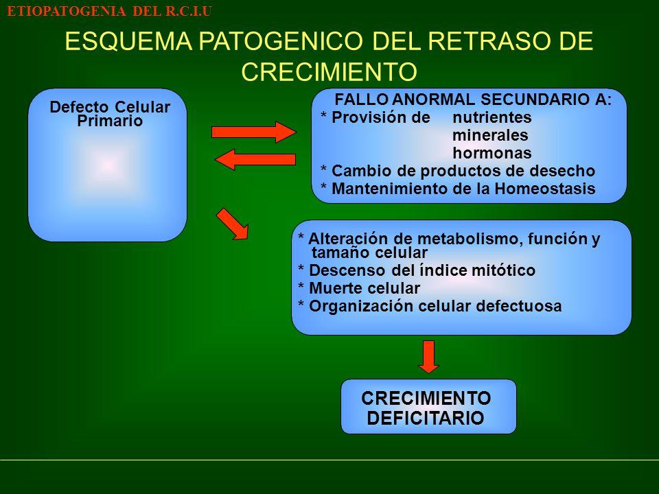Defecto Celular Primario ETIOPATOGENIA DEL R.C.I.U ESQUEMA PATOGENICO DEL RETRASO DE CRECIMIENTO FALLO ANORMAL SECUNDARIO A: * Provisión denutrientes minerales hormonas * Cambio de productos de desecho * Mantenimiento de la Homeostasis * Alteración de metabolismo, función y tamaño celular * Descenso del índice mitótico * Muerte celular * Organización celular defectuosa CRECIMIENTO DEFICITARIO