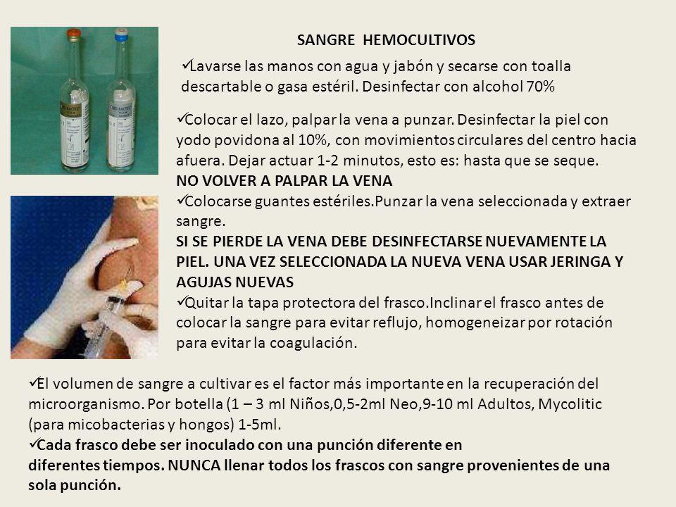 SANGRE HEMOCULTIVOS Lavarse las manos con agua y jabón y secarse con toalla descartable o gasa estéril. Desinfectar con alcohol 70% Colocar el lazo, p