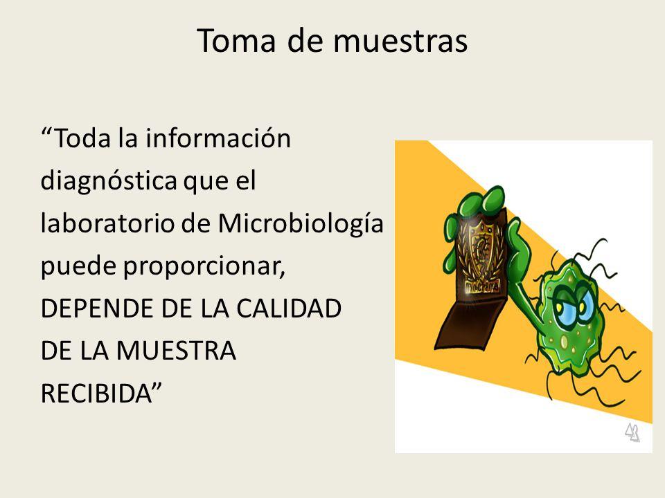 Toma de muestras Toda la información diagnóstica que el laboratorio de Microbiología puede proporcionar, DEPENDE DE LA CALIDAD DE LA MUESTRA RECIBIDA