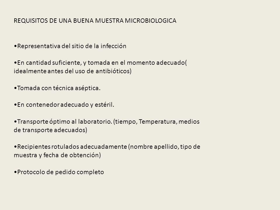 REQUISITOS DE UNA BUENA MUESTRA MICROBIOLOGICA Representativa del sitio de la infección En cantidad suficiente, y tomada en el momento adecuado( ideal