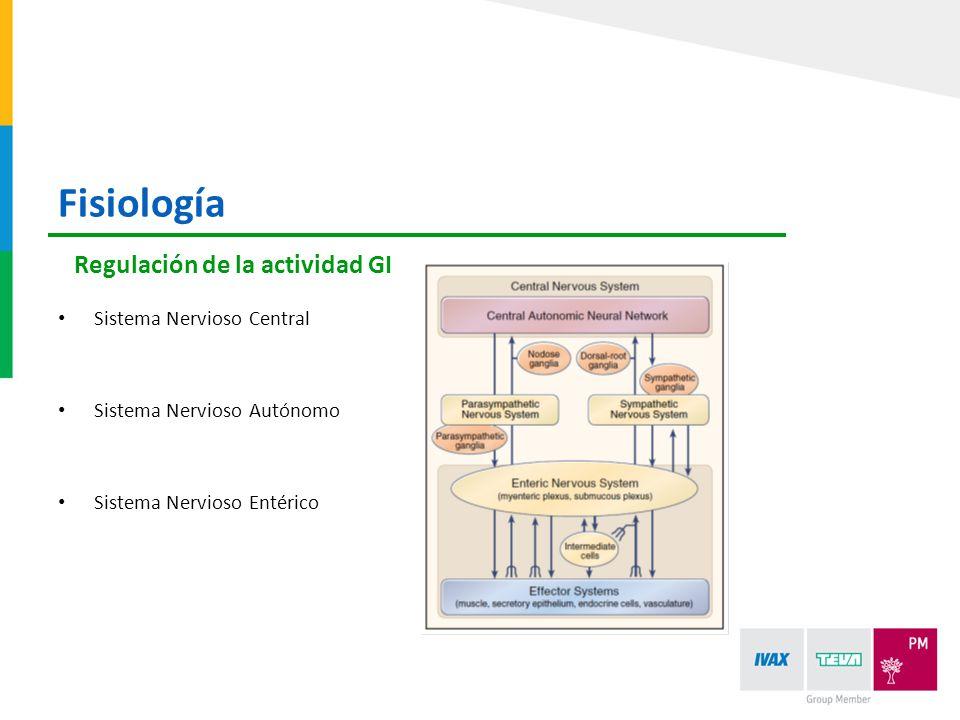 Sistema Nervioso Central Sistema Nervioso Autónomo Sistema Nervioso Entérico Regulación de la actividad GI