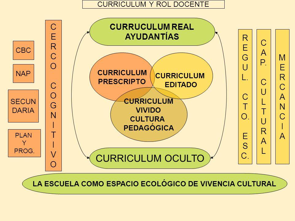 CURRICULUM PRESCRIPTO CURRICULUM Y ROL DOCENTE CERCOCOGNITIVOCERCOCOGNITIVO R E G U L. C T O. E S C. CURRUCULUM REAL AYUDANTÍAS CURRICULUM OCULTO LA E