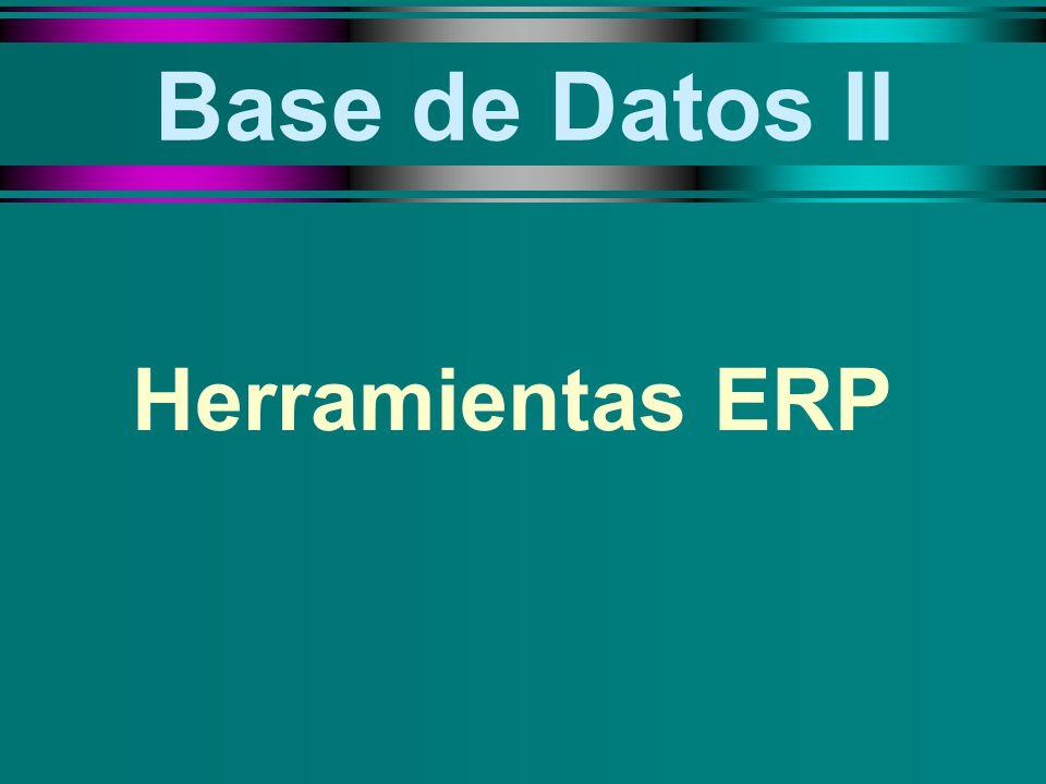 TAREAS: u La evaluación funcional u El análisis de los requisitos de negocio u El diseño de informes u El aseguramiento del control de los negocios