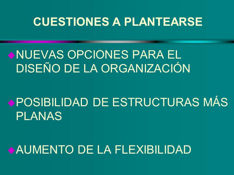 CUESTIONES A PLANTEARSE u NUEVAS OPCIONES PARA EL DISEÑO DE LA ORGANIZACIÓN u POSIBILIDAD DE ESTRUCTURAS MÁS PLANAS u AUMENTO DE LA FLEXIBILIDAD
