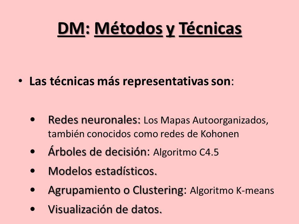 DM: Métodos y Técnicas Las técnicas más representativas son: Redes neuronales: Redes neuronales: Los Mapas Autoorganizados, también conocidos como redes de Kohonen Árboles de decisión Árboles de decisión : Algoritmo C4.5 Modelos estadísticos.