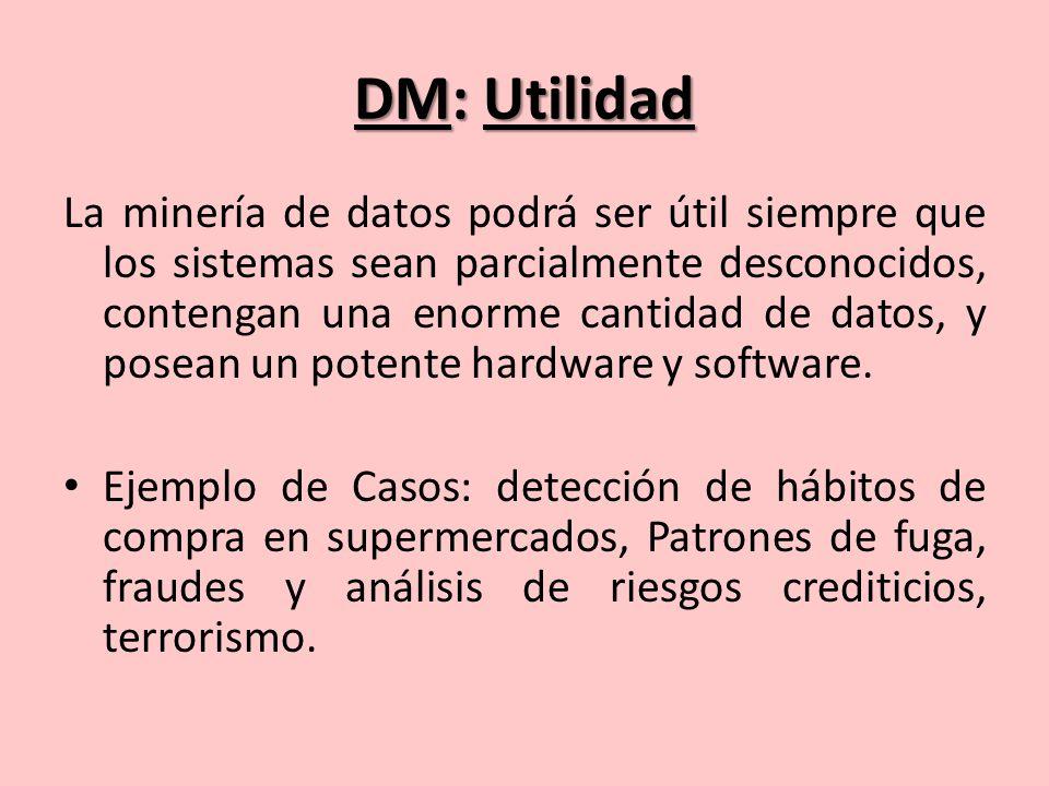 DM: Utilidad La minería de datos podrá ser útil siempre que los sistemas sean parcialmente desconocidos, contengan una enorme cantidad de datos, y posean un potente hardware y software.
