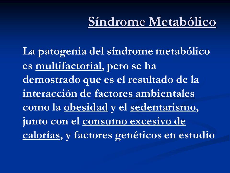 Síndrome Metabólico La patogenia del síndrome metabólico es multifactorial, pero se ha demostrado que es el resultado de la interacción de factores am
