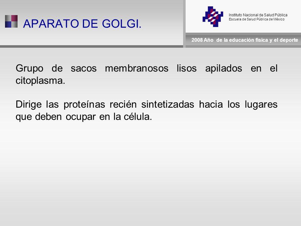 Instituto Nacional de Salud Pública Escuela de Salud Pública de México 2008 Año de la educación física y el deporte APARATO DE GOLGI.