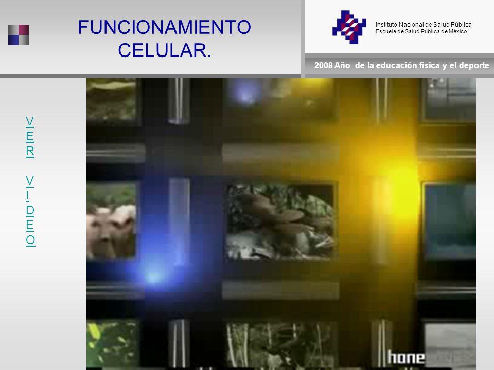 Instituto Nacional de Salud Pública Escuela de Salud Pública de México 2008 Año de la educación física y el deporte FUNCIONAMIENTO CELULAR.