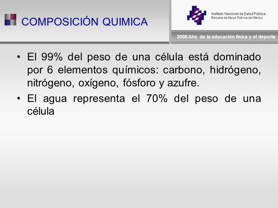 Instituto Nacional de Salud Pública Escuela de Salud Pública de México 2008 Año de la educación física y el deporte COMPOSICIÓN QUIMICA El 99% del peso de una célula está dominado por 6 elementos químicos: carbono, hidrógeno, nitrógeno, oxígeno, fósforo y azufre.