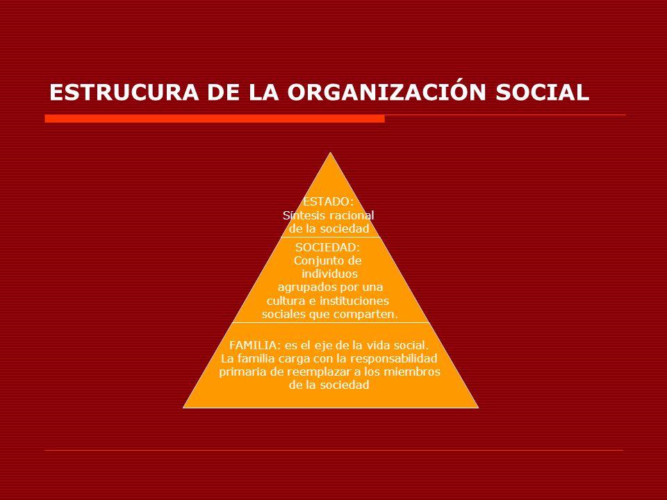 ESTRUCURA DE LA ORGANIZACIÓN SOCIAL ESTADO: Síntesis racional de la sociedad SOCIEDAD: Conjunto de individuos agrupados por una cultura e institucione