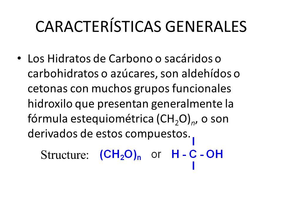 CARACTERÍSTICAS GENERALES La mayoría de carbohidratos se encuentran en grupos, más que en azúcares simples: – Polisacáridos (Almidón, celulosa, etc) – Glucoproteínas y Proteoglucanos (hormonas, sustancias del grupo sanguíneo, anticuerpos).