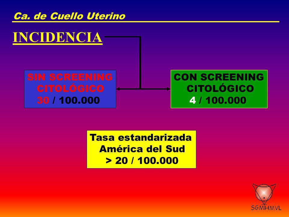 Ca. de Cuello Uterino INCIDENCIA SIN SCREENING CITOLÓGICO 30 / 100.000 CON SCREENING CITOLÓGICO 4 / 100.000 Tasa estandarizada América del Sud > 20 /