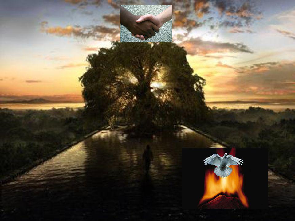 XIII. Michael «En el Principio era la Unidad. De la Unidad fue emanada la Multiplicidad de los seres, así como las corrientes misteriosas y el dominio