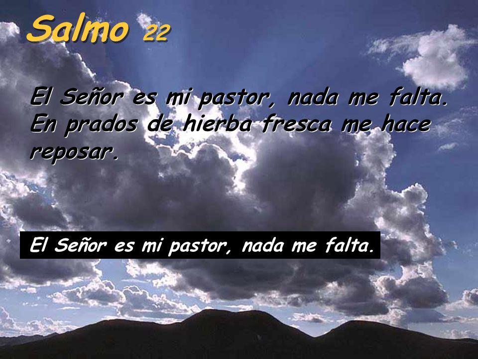 Porque esto dice el Señor: Yo mismo buscaré a mis ovejas y las apacentaré. Como un pastor cuida de sus ovejas cuando están dispersas, así cuidaré yo a
