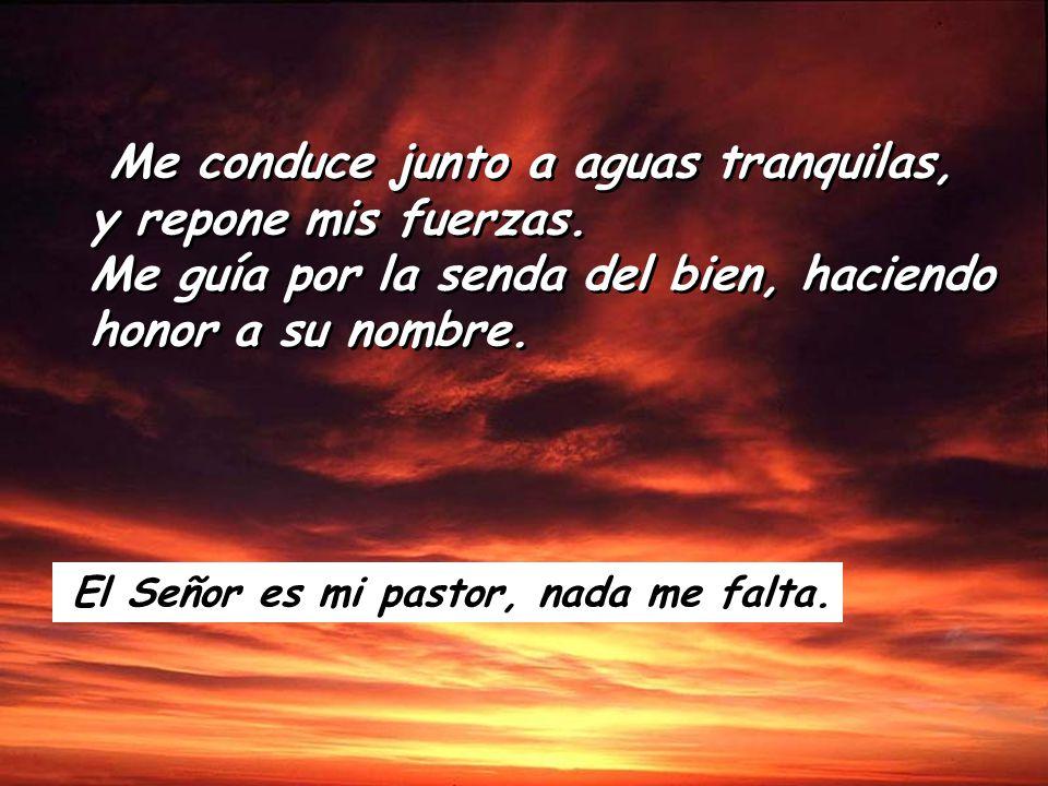Salmo 22 El Señor es mi pastor, nada me falta. En prados de hierba fresca me hace reposar. El Señor es mi pastor, nada me falta.