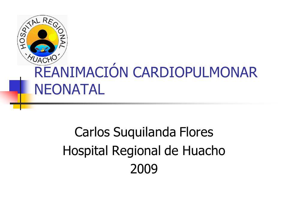 REANIMACIÓN CARDIOPULMONAR NEONATAL Carlos Suquilanda Flores Hospital Regional de Huacho 2009