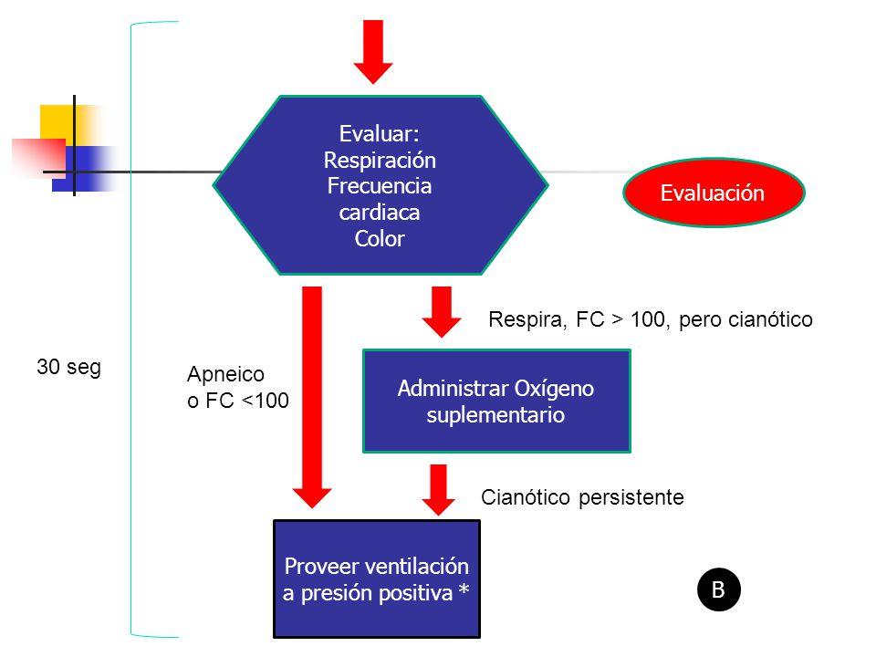 Evaluar: Respiración Frecuencia cardiaca Color Evaluación Administrar Oxígeno suplementario Proveer ventilación a presión positiva * Respira, FC > 100, pero cianótico Apneico o FC <100 Cianótico persistente B 30 seg