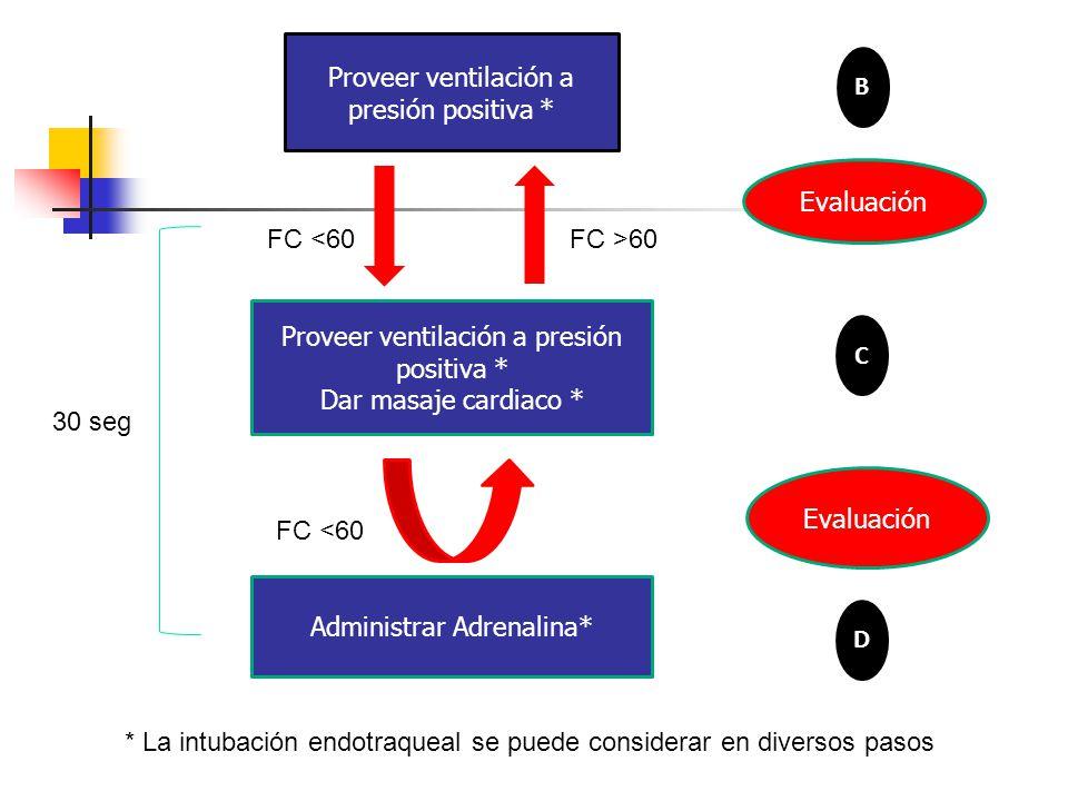 Proveer ventilación a presión positiva * Dar masaje cardiaco * Evaluación Administrar Adrenalina* Evaluación Proveer ventilación a presión positiva * B FC <60FC >60 FC <60 * La intubación endotraqueal se puede considerar en diversos pasos 30 seg C D