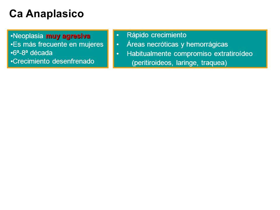 Ca Anaplasico muy agresivaNeoplasia muy agresiva Es más frecuente en mujeres 6ª-8ª década Crecimiento desenfrenado Rápido crecimiento Áreas necróticas