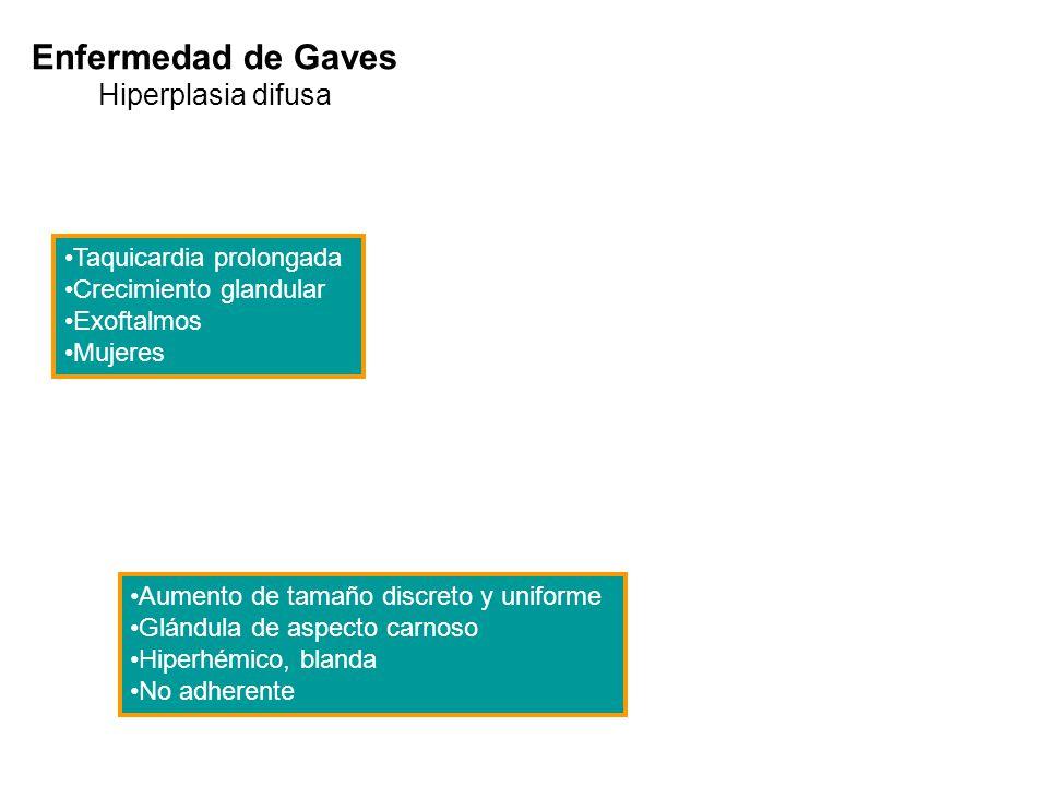 Enfermedad de Gaves Hiperplasia difusa Taquicardia prolongada Crecimiento glandular Exoftalmos Mujeres Aumento de tamaño discreto y uniforme Glándula
