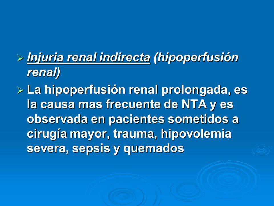 Injuria renal indirecta (hipoperfusión renal) Injuria renal indirecta (hipoperfusión renal) La hipoperfusión renal prolongada, es la causa mas frecuente de NTA y es observada en pacientes sometidos a cirugía mayor, trauma, hipovolemia severa, sepsis y quemados La hipoperfusión renal prolongada, es la causa mas frecuente de NTA y es observada en pacientes sometidos a cirugía mayor, trauma, hipovolemia severa, sepsis y quemados