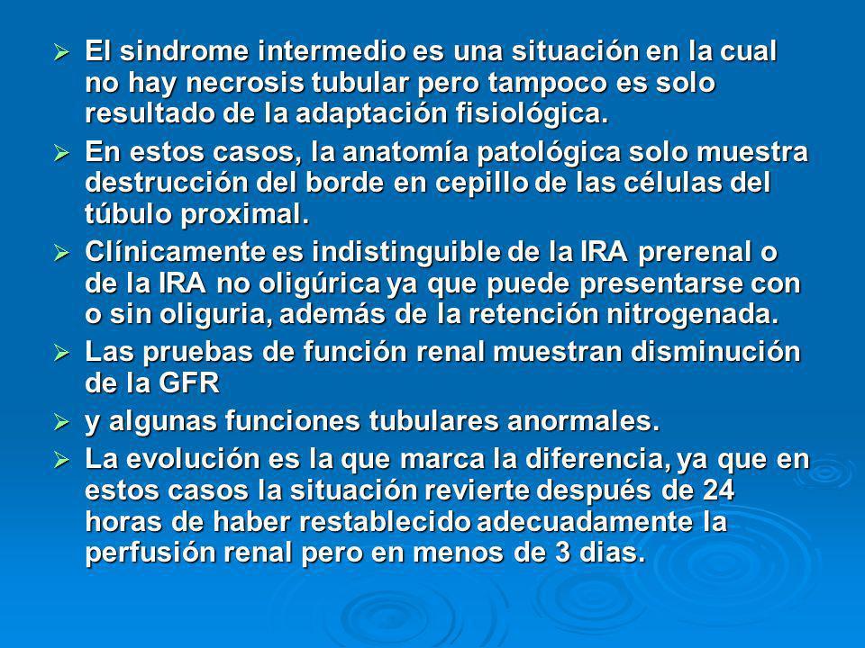 El sindrome intermedio es una situación en la cual no hay necrosis tubular pero tampoco es solo resultado de la adaptación fisiológica. El sindrome in