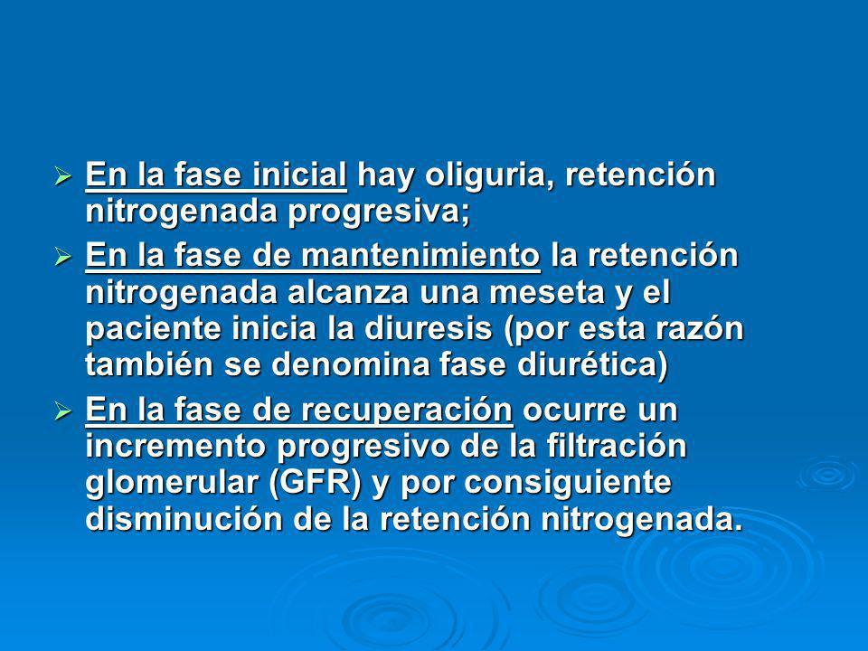 En la fase inicial hay oliguria, retención nitrogenada progresiva; En la fase inicial hay oliguria, retención nitrogenada progresiva; En la fase de ma