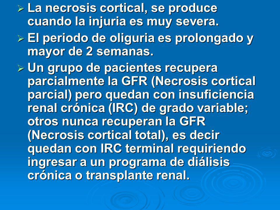 La necrosis cortical, se produce cuando la injuria es muy severa. La necrosis cortical, se produce cuando la injuria es muy severa. El periodo de olig