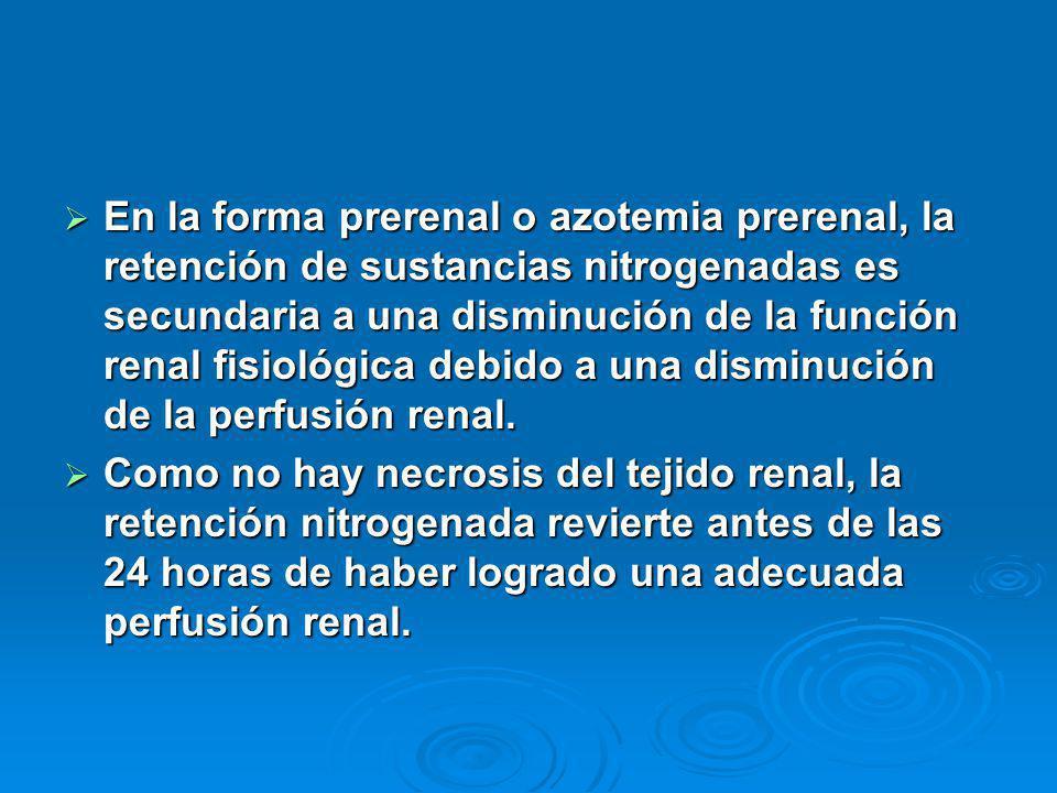En la forma prerenal o azotemia prerenal, la retención de sustancias nitrogenadas es secundaria a una disminución de la función renal fisiológica debi