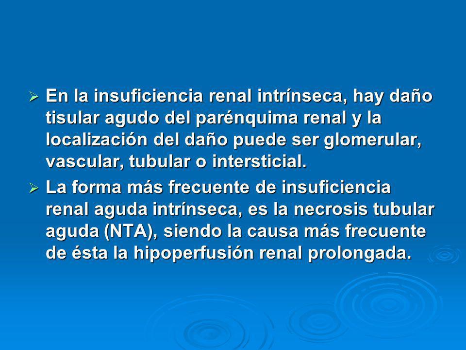 En la insuficiencia renal intrínseca, hay daño tisular agudo del parénquima renal y la localización del daño puede ser glomerular, vascular, tubular o