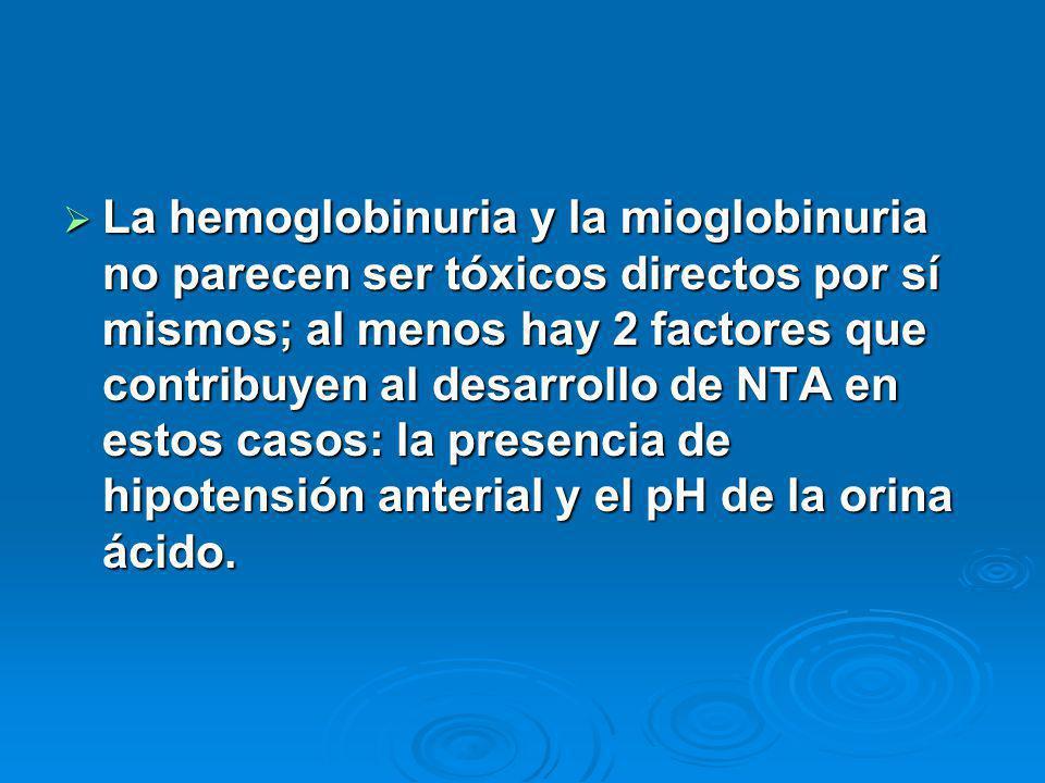 La hemoglobinuria y la mioglobinuria no parecen ser tóxicos directos por sí mismos; al menos hay 2 factores que contribuyen al desarrollo de NTA en estos casos: la presencia de hipotensión anterial y el pH de la orina ácido.