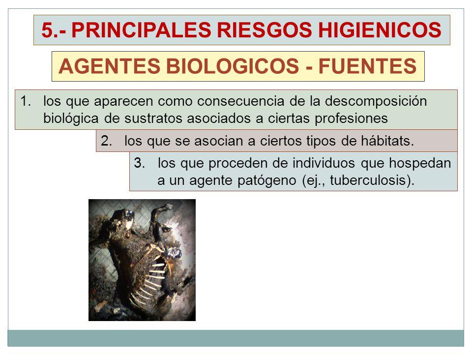 1.los que aparecen como consecuencia de la descomposición biológica de sustratos asociados a ciertas profesiones AGENTES BIOLOGICOS - FUENTES 5.- PRINCIPALES RIESGOS HIGIENICOS 2.los que se asocian a ciertos tipos de hábitats.