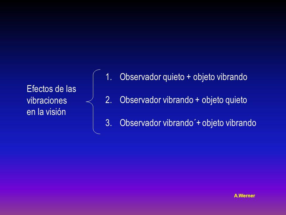 Efectos de las vibraciones en la visión 1.Observador quieto + objeto vibrando 2.Observador vibrando + objeto quieto 3.Observador vibrando´+ objeto vibrando A.Werner