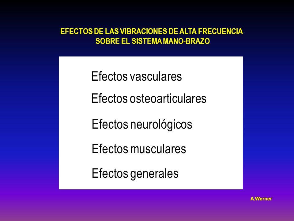 EFECTOS DE LAS VIBRACIONES DE ALTA FRECUENCIA SOBRE EL SISTEMA MANO-BRAZO SOBRE EL SISTEMA MANO-BRAZO Efectos vasculares Efectos osteoarticulares Efectos neurológicos Efectos musculares Efectos generales A.Werner