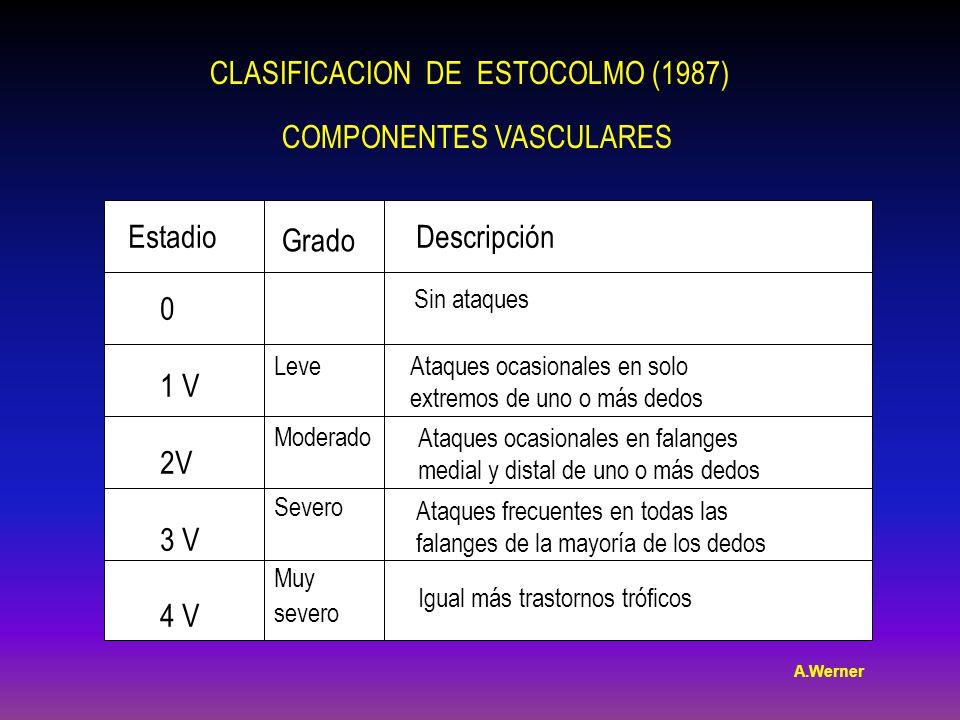 CLASIFICACION DE ESTOCOLMO (1987) COMPONENTES VASCULARES Grado EstadioDescripción 0 1 V 2V 3 V 4 V Leve Moderado Severo Muy severo Sin ataques Ataques ocasionales en solo extremos de uno o más dedos Ataques ocasionales en falanges medial y distal de uno o más dedos Ataques frecuentes en todas las falanges de la mayoría de los dedos Igual más trastornos tróficos A.Werner
