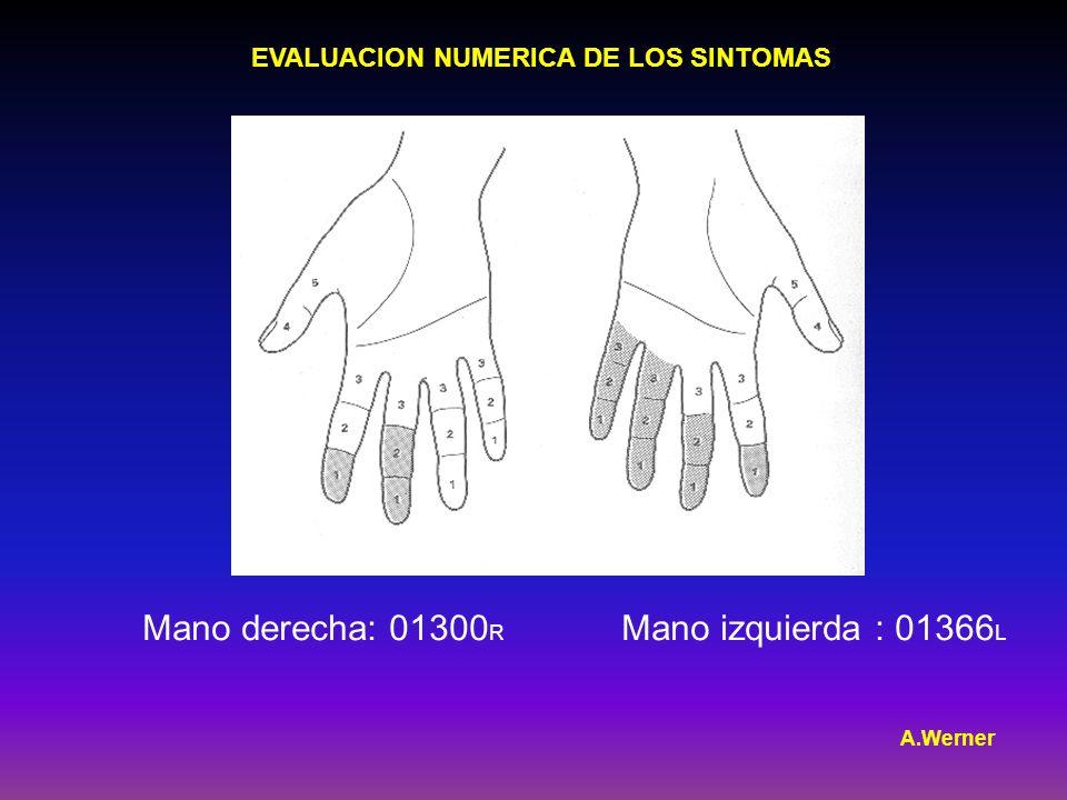 EVALUACION NUMERICA DE LOS SINTOMAS Mano derecha: 01300 R Mano izquierda : 01366 L A.Werner