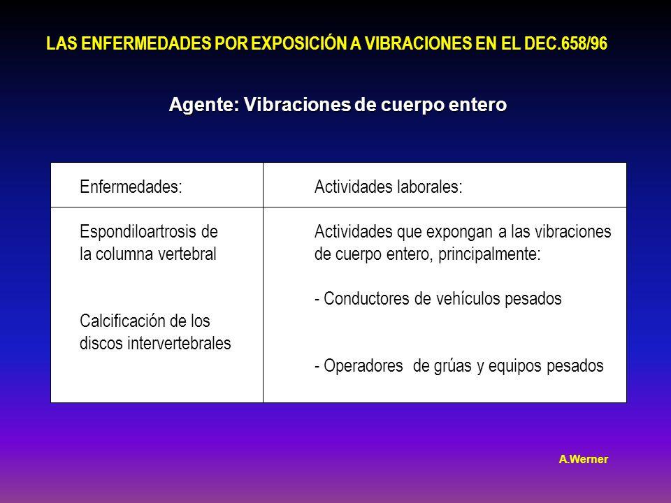 LAS ENFERMEDADES POR EXPOSICIÓN A VIBRACIONES EN EL DEC.658/96 Agente: Vibraciones de cuerpo entero Enfermedades: Espondiloartrosis de la columna vertebral Calcificación de los discos intervertebrales Actividades laborales: Actividades que expongan a las vibraciones de cuerpo entero, principalmente: - Conductores de vehículos pesados - Operadores de grúas y equipos pesados A.Werner