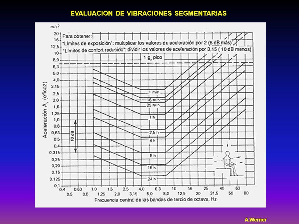 EVALUACION DE VIBRACIONES SEGMENTARIAS A.Werner
