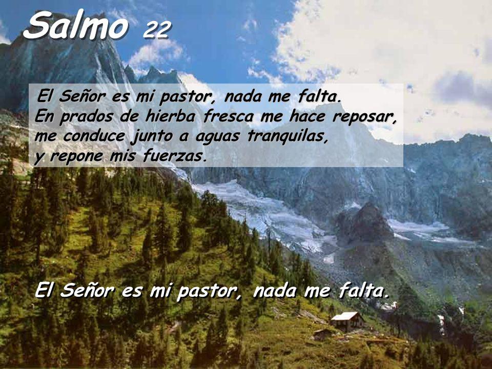 El Señor dijo a Samuel: -¿Hasta cuándo vas a estar llorando por Saúl, si yo lo he rechazado como rey de Israel.