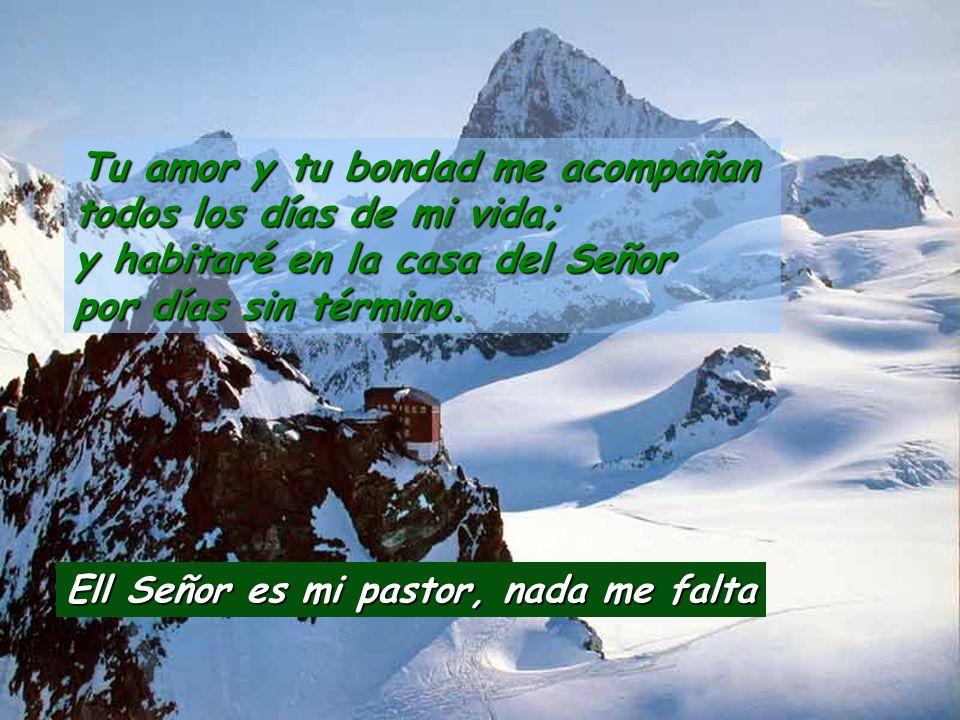 El Señor es mi pastor, nada me falta.