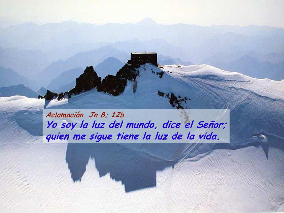 Aclamación Jn 8; 12b Yo soy la luz del mundo, dice el Señor; quien me sigue tiene la luz de la vida.
