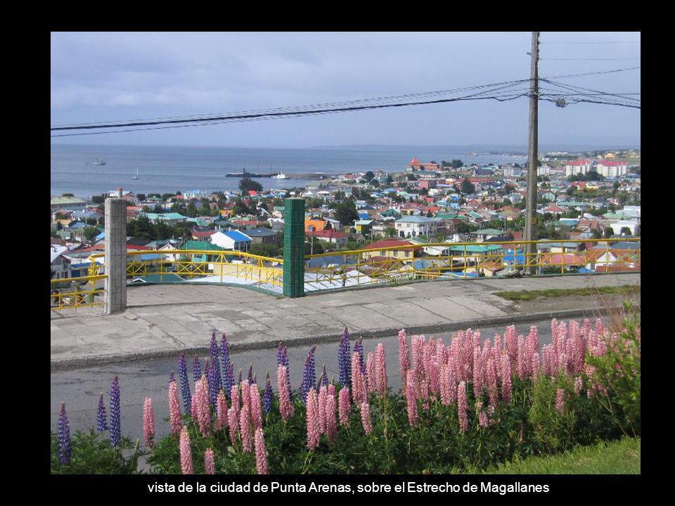 vista de la ciudad de Punta Arenas, sobre el Estrecho de Magallanes
