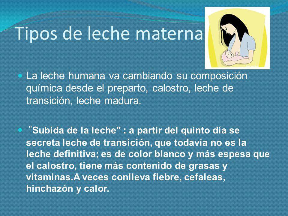 Tipos de leche materna La leche humana va cambiando su composición química desde el preparto, calostro, leche de transición, leche madura.
