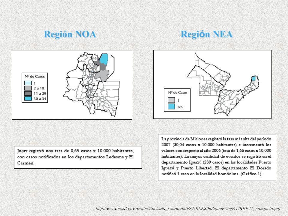 SINAVE (Sistema Nacional de Vigilancia Epiemiológica) Dirección de Epidemiología Notificaciones recibidas al 29 de diciembre de 2007 Casos totales: 36