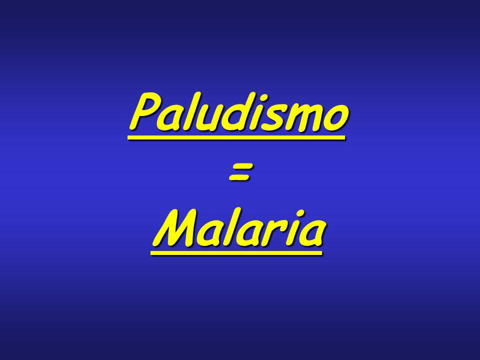 Paludismo = Malaria